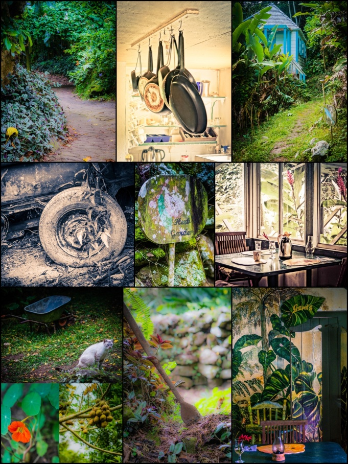 Ecolodge Collage