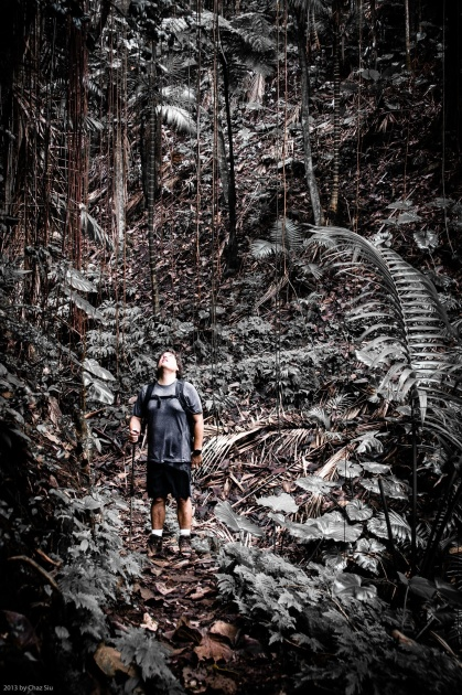 Michael Siu On The Sandy Cruz Trail, Saba, Dutch Caribbean