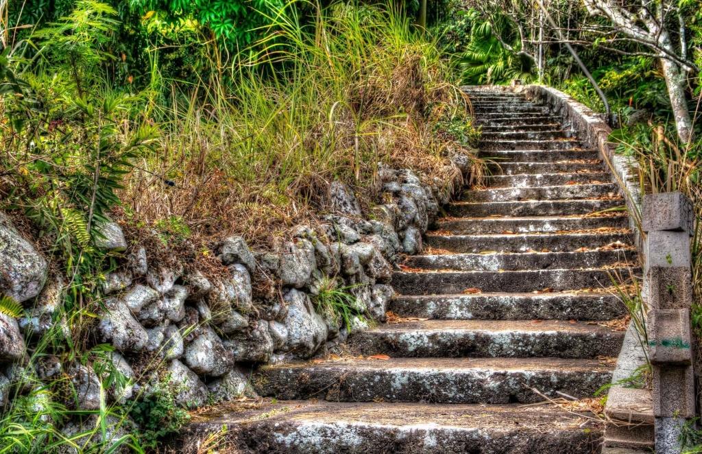 Volcanic Stone Stairway, Saba, Dutch Caribbean