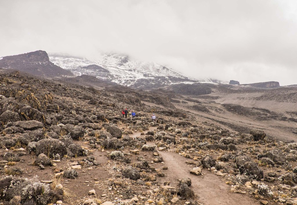 Acclimatization Hike To Just Below Lava Tower -14,100 Feet