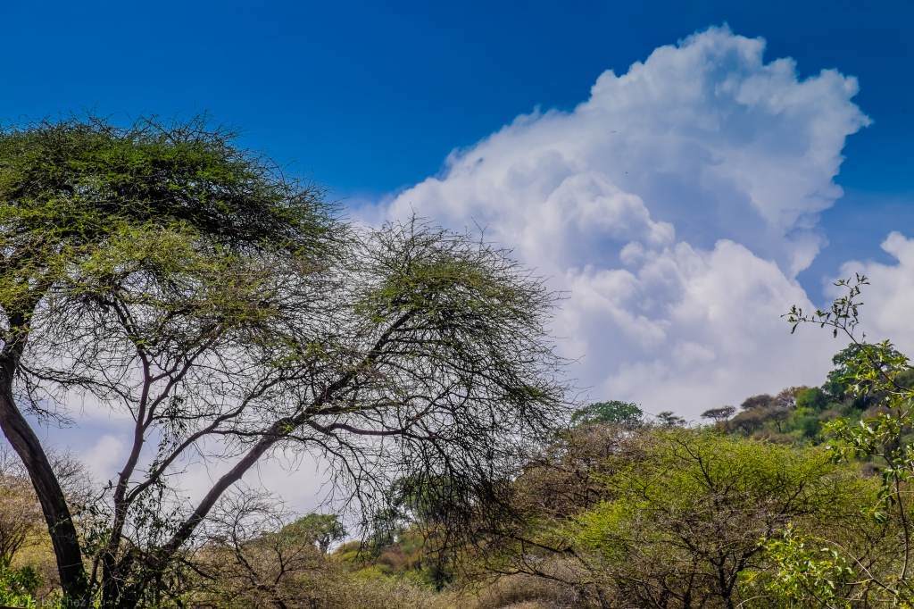 Clouds Above Lake Manyara Cliffs