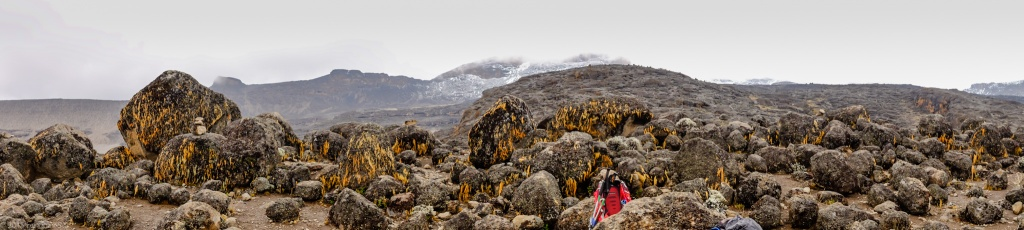 CLICK TO EXPAND: Field of Volcanic Rocks On The Way to Moir Hut