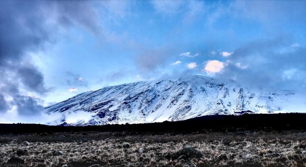 Kilimanjaro - Buffalo Camp
