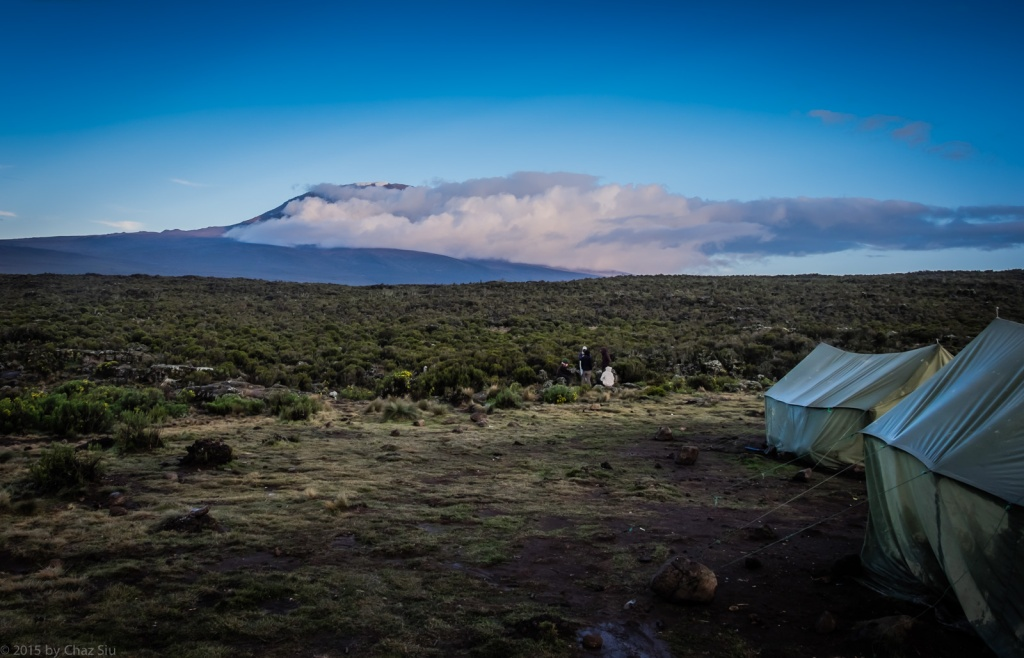 Kilimanjaro, From Shira One Camp