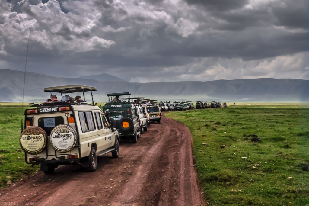 Landcruiser Migration For Black Rhino Sighting