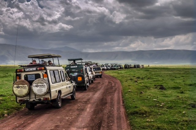 Landcruiser Migration For Black Rhino Sighting