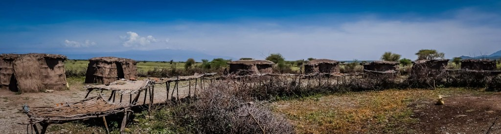 Maasai Village With Cattle Pen Fence Made of Brambles