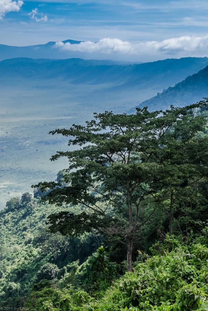 Ngorongoro Crater Portrait