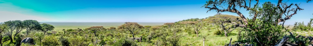 CLICK TO EXPAND: Naabi Hill View Of the Southern Serengeti Plains
