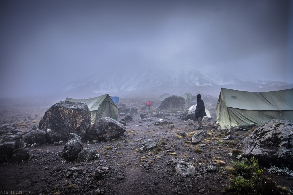Pea Soup Mist At Buffalo Camp With Kili In The Background