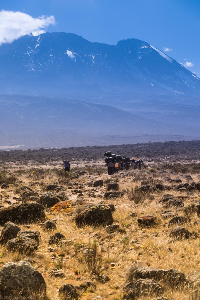 Our Porters March To Shira Hut With Kilimanjaro Chewing Up The Horizon