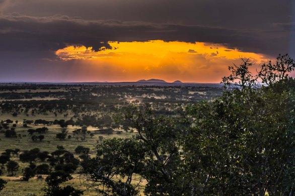 Serengeti Sunset From Lobo Lodge